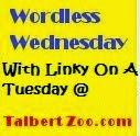 Wordless Wednesday Linky